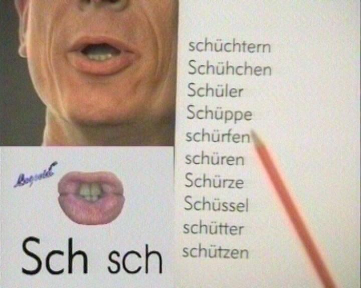Logovid Wortlisten e