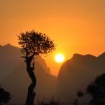 REISE-Logovid Oman Sonnenuntergang