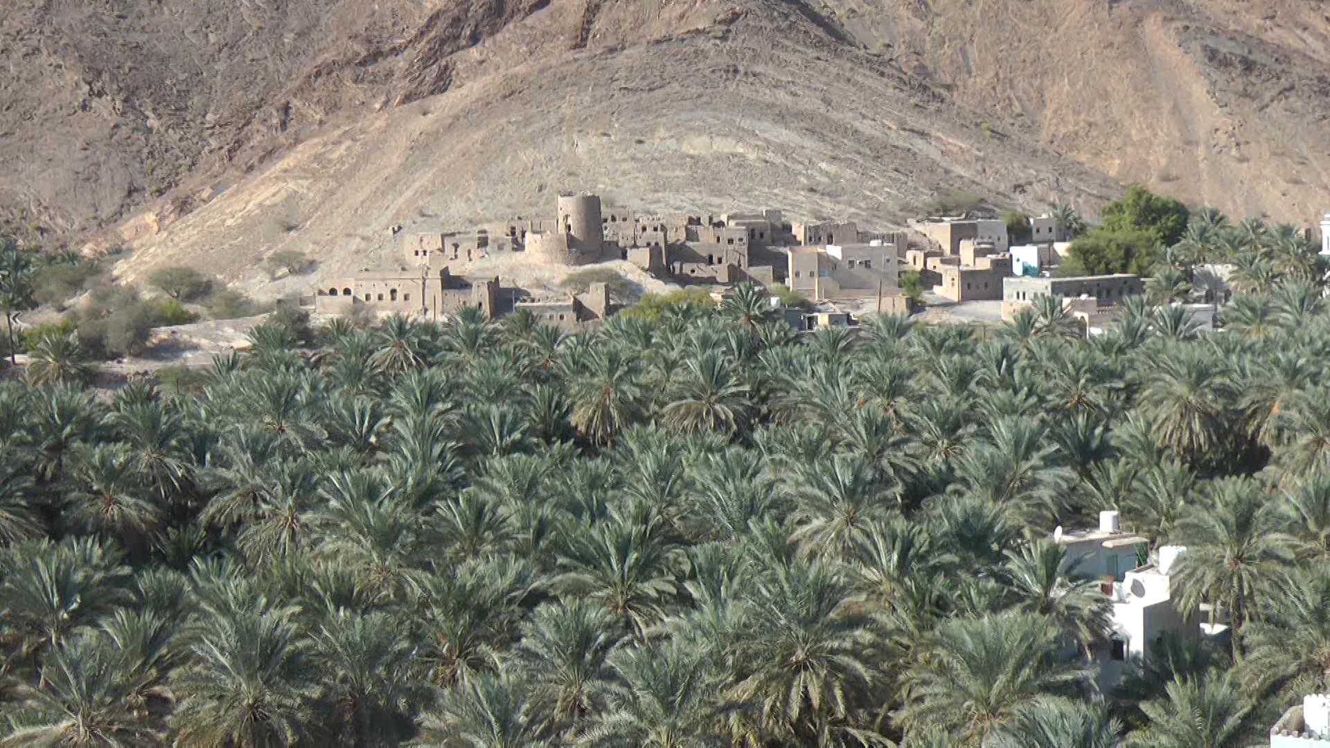 REISE-Logovid Oman Oase 2